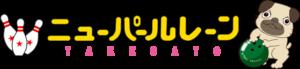 nplane_logo