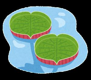 plant_ooonibasu